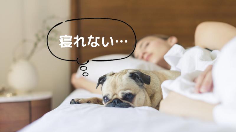 寝れない時の対処法3選!【生活習慣を改善しよう】